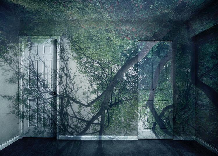 Nizam_Tree_In_Room