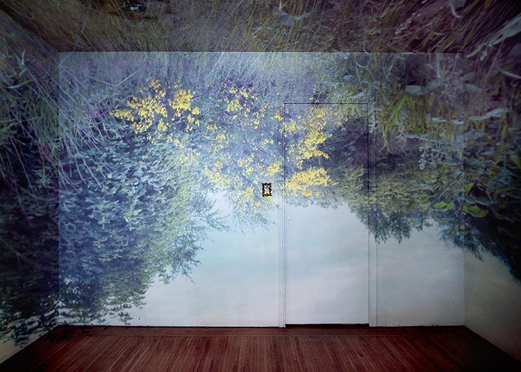 Nizam_Wild_Flowers_In_Room